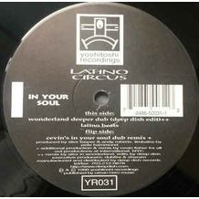 IN YOUR SOUL (CEVIN FISHER REMIXES)
