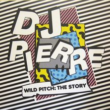 WILD PITCH THE STORY
