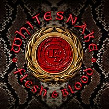 FLESH & BLOOD (CD + DVD)