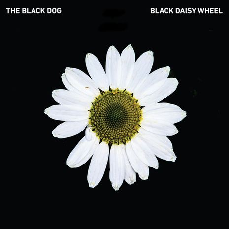 BLACK DAISY WHEEL