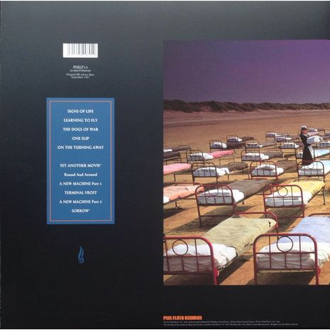 A MOMENTARY LAPSE OF REASON